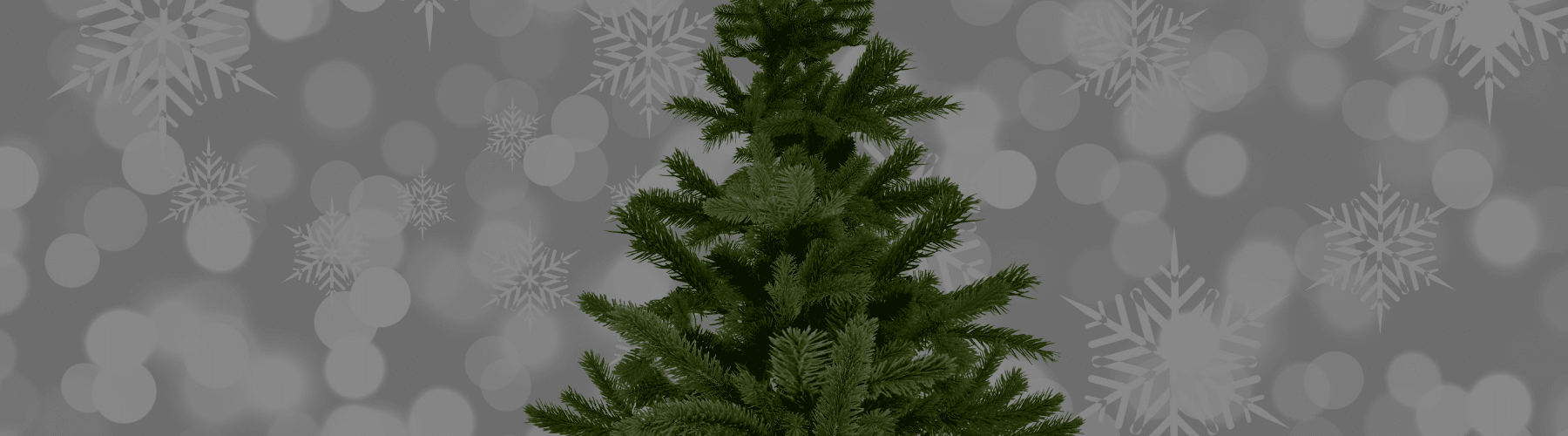 Haynie Gives: Holiday Tree Auction